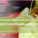 SLIDE-PANORAMA-AGRICOLA 2014